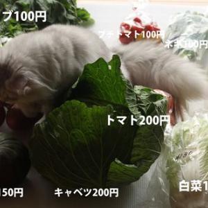 道の駅 アルプ飛騨古川で買った野菜を調理した!