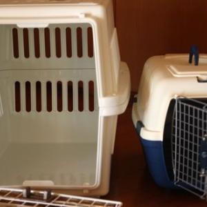 猫2匹同時に運ぶために中型犬用のエアトラベルキャリーを買った