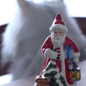 ウチもクリスマスの準備しました!