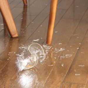 お気に入りのグラスが割れた→犯人はコイツだ!