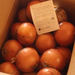 ふるさと納税 北海道栗山町 越冬用減農薬玉ねぎ10kg