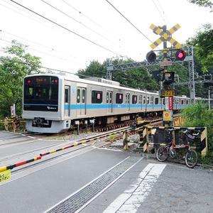 鉄道眺めながらミニベロで神奈川県一周210km