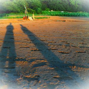 夕涼み親子散歩