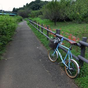 秋を感じるご近所谷戸サイクリング