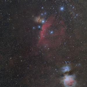 オリオン座の三ツ星付近で贅沢構図