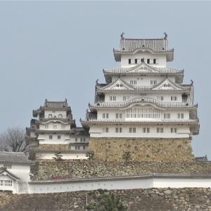 3月29日の桜の開花状況は?世界遺産『姫路城』に6年ぶりに行ってきました。