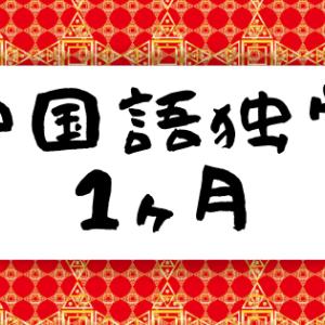 【中国語のすゝめ#1】実は1ヶ月中国語を独学しています。