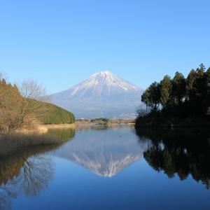 富士山を見にドライブ! ~富士五湖、田貫湖、朝霧高原、白糸の滝~ 御殿場高原ホテルはおすすめです!