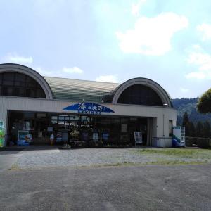 日本滝百選の一つである「関之尾の滝」に行ってきました!