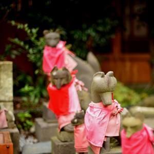 於菊稲荷神社#2