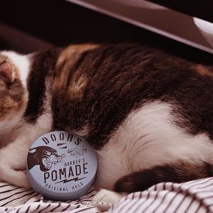 猫とポマード DOORS 香りがいい!
