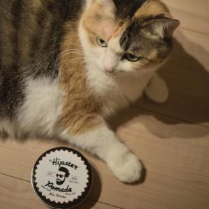 猫とポマード Hipster 日本未発売品