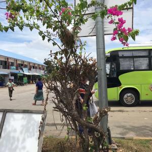 【バガン→マンダレー】ミャンマーはバスでもキツい⁉︎Moe Thauk Htun EXPRESS乗車録
