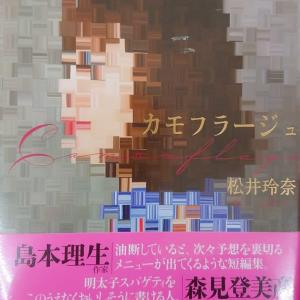 松井玲奈 著「カモフラージュ」概要、感想・レビュー等