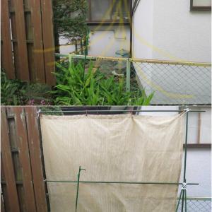 隣家のタバコの吸い方とその対策