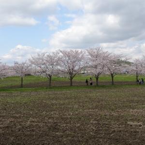 【奈良】醍醐池周辺~大中公園~香芝畑2丁目食堂