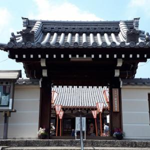新家長福寺の春の花 奈良県広陵町