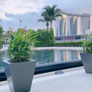 結婚記念日は、シンガポールらしい景色を眺めながら
