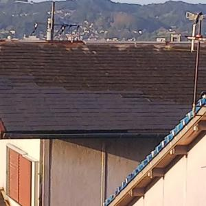 屋根はコロニアルの棟部分の役物がなく、