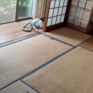 1階のお座敷に、縁側も掃除機をかけていきます。
