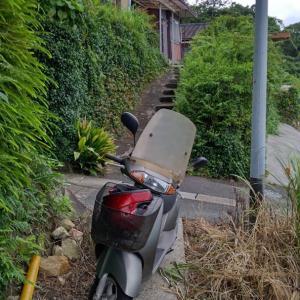 お客様宅に、雨漏り修理と石垣の雑草切りの見積りを