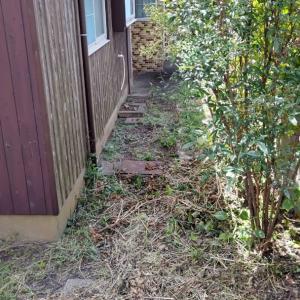 今日は先日荒刈した草刈現場をさらにきれいに刈りあげます。