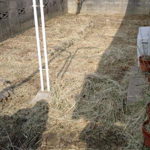 僕らは、まず前日に刈った刈草の片付けをします。