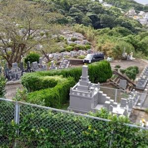 墓石の間の垣根の剪定や法面の草刈の依頼です。霊園の