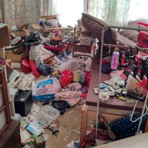 お部屋は完全に、ゴミ屋敷化しています…