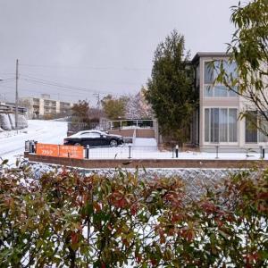 庭も道路も、ご近所の屋根上も雪が積もっています。