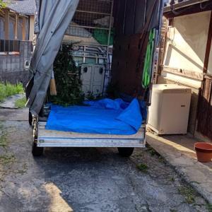軽トラックの荷台にブルーシートを敷き、今日切った