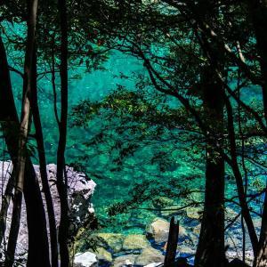 日本一の清流 大台宮川をいく