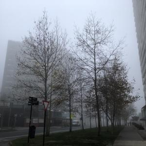 霧のサンチアゴ