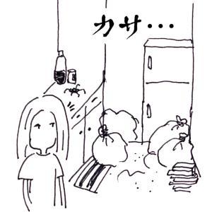汚部屋時代【ゴキ◯リ vs 私】第2戦