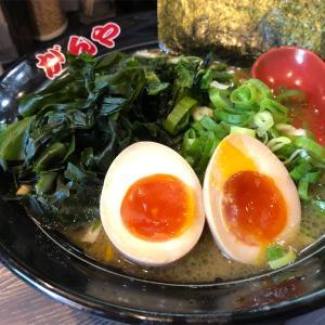 ライトな豚骨醤油ラーメンGANYAガンヤのオリジナルライト系スープを改めて楽しむ!!がんやの看板が完成したので早速行ってみました!!