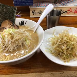 相模大野麺屋『鼎』本気の味噌!!とんこつ味噌って濃厚で熱々でたまんねぇなぁ!!