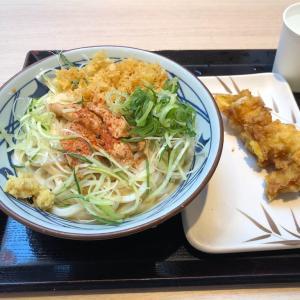 丸亀製麺濃厚ごまだれ棒棒鶏(バンバンジー)うどんがピリッとした辛さでさっぱりして美味かったのでご紹介!!