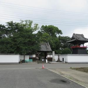 能護寺(あじさい寺)