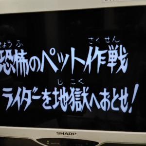 テレビ視聴記 7/23.2021