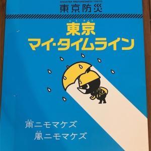 【東京防災】「東京 マイ・タイムライン」で作った計画と実際の台風で違っていた点