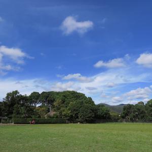 嵯峨野・落柿舎から青空を望む