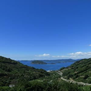 みかん畑から海を望む~これぞ紀州という光景~