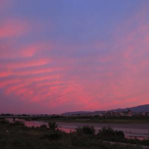 華麗なるひととき~京都・桂川の夕焼け~