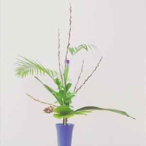 Portfolio-Flowers