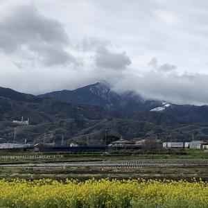 今シーズン最後の雪!