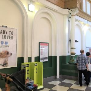 【イギリス犬猫事情】その2 動物保護施設「バタシードッグアンドキャッツホーム」