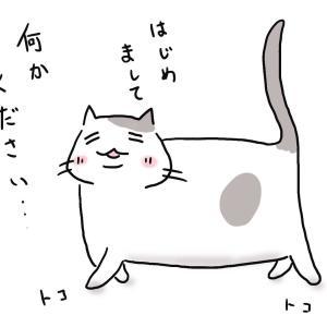 お客様好きな猫、逃げる猫
