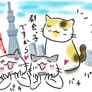 さすが東京!さくら猫