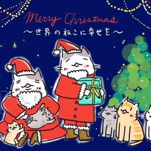 クリスマス。世界のねこに幸せを!長野県でまた多頭飼育崩壊