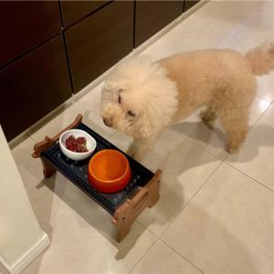 生肉のモニター③飼い主マコの感想